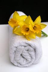 spring spa massage