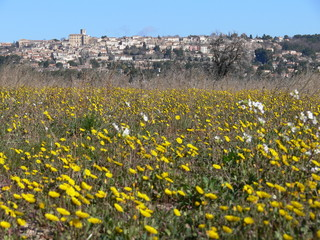 village au printemps