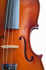 musical instruments: violin closeup showing the br