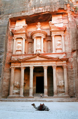 petra - the treasury with camel