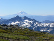 mt adams seen from mt rainier