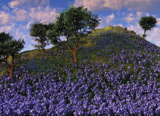 blue flower hillside