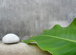 zen still life - natural spa