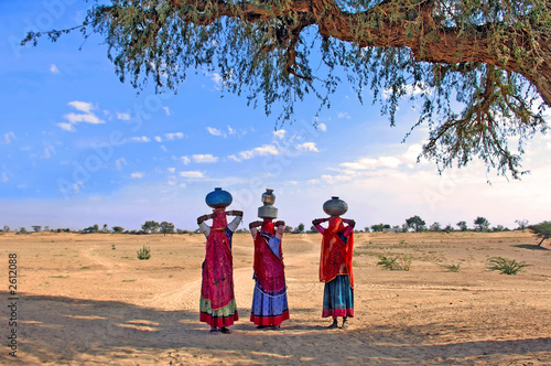 india, thar desert near jaisalmer: women carrying water