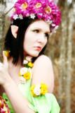 beautiful fairy or wood elf poster