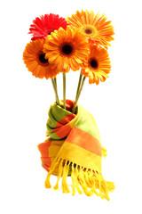 herberas in a scarf vase