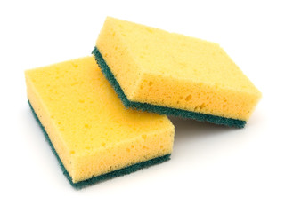 two cleaning sponges