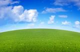 Fototapety prairie arrondie au printemps