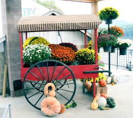 carrito con flores y calabazas