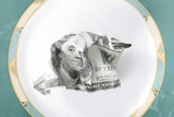 dollar as meal on a plate