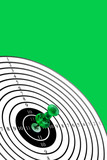 shooting-target on green background poster