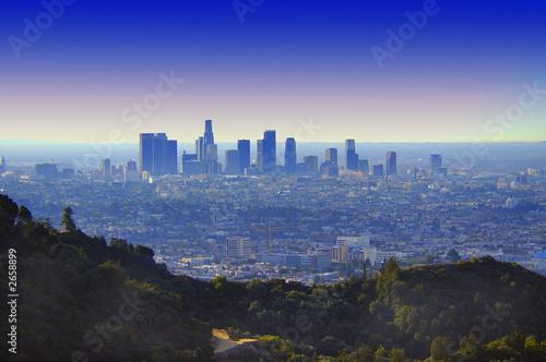Canvas Los Angeles los angeles