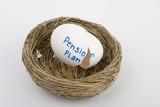 empty pension plan poster
