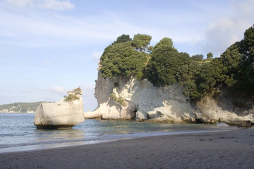 cliffs of coromandel  cove new zealand