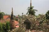 view of wats and chedis of ayutthaya poster