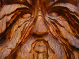tree trunk face poster