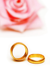 two golden wedding rings and a pink rose