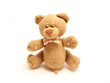 sly male teddy bear