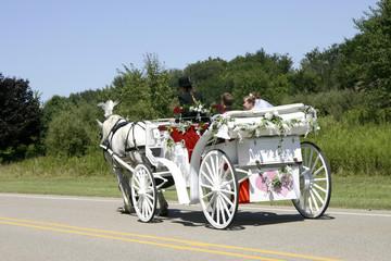 horse-drawn newlyweds
