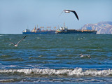 gulls, stormy sea and ships 2 poster