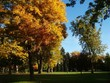 A City Park In Autumn In Denver Colorado