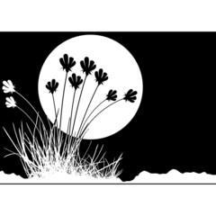 floral decoration 03
