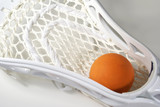 lacrosse head and ball poster