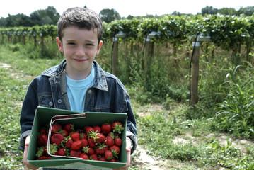 enfant tenant une barquette de fraises
