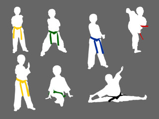 all stage of taekwondo