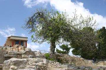 ruins of knossos palace, crete