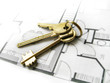 gold keys for the new dream home