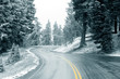 winter road - 2744620