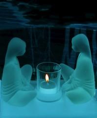 les veilleurs de nuit
