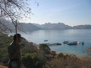 view from the rinca island to the bay and the sea, komodo archip