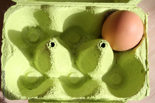 egg in a box