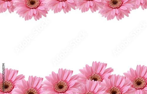 Story ore blog pink flowers border pink flowers border mightylinksfo