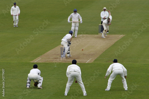 cricket action - 2779017