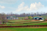 Fototapety kentucky horse ranch