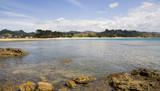 coromandel peninsula beach poster