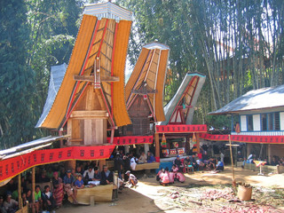 toraja ceremony in traditional houses, rantepao, sulawesi island