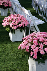 wedding chairs with pink flowers