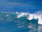 surfers in maui, hawaii poster