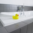 little yellow rubber duck in the bathroom