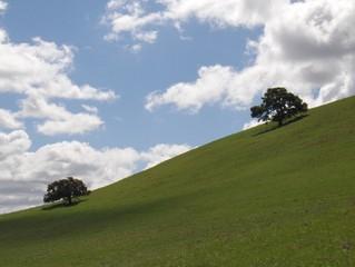 green hills - blue sky 8