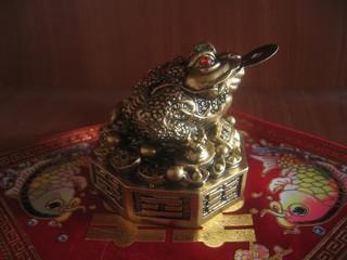 monetary toad