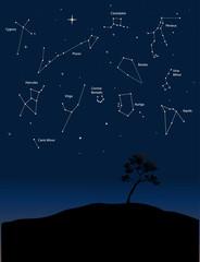 constellations 1