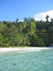 blue water and tropical beach, togians island, sulawesi, indones