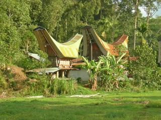 traditional toraja houses, rantepao, sulawesi island, indonesia