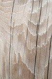 wavy cracked wood texture poster