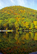 reflections in hessian lake